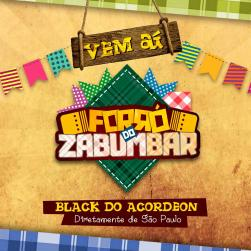 panfleto Forró do Zabumbar